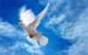 """Центр духовно-нравственного развития и воспитания обучающихся """"Свет души"""""""