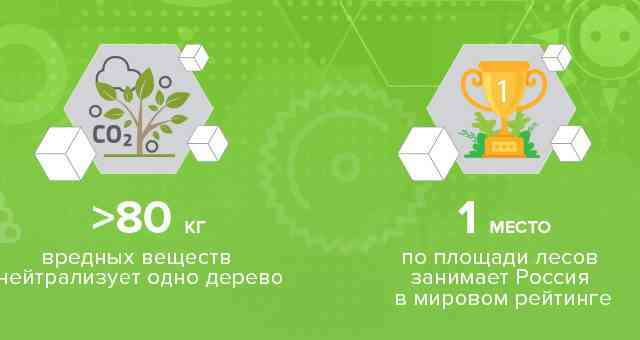 «Здравствуй, дерево!»-16 мая состоится очередной Всероссийский открытый урок «ПроеКТОриЯ»!